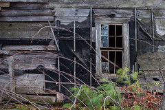 Barely standing (DjD-567) Tags: house window barn timber nh weathered salisbury leaning deteriorated delapidated