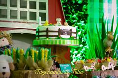 FAZENDINHA DO TULIO 2015 FINAL-36 (agencia2erres) Tags: aniversario 1 infantil festa ano fazenda fazendinha