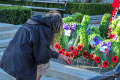 Lest We Forget (WarpFactorEnterprises) Tags: fall remember cityhall honor poppy remembranceday newwestminster 2015