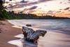 Kauai Beach (Ian Gwaltney) Tags: ocean trees sunset sun motion tree beach water set ian flow island hawaii sand nikon palm stump kauai nikkor rise hdr anahola d700 gwaltney ianspix