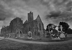 Quin Abbey Graves (CircleStudios16) Tags: abbey countyclare ennis ireland quin shannon sixmilebridge 372