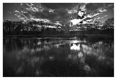 The light was / La lumiére fut (romain-dreux-photo) Tags: bw landscape montréal nb québec tamronspaf1750mmf28xrdiii sonya77markii