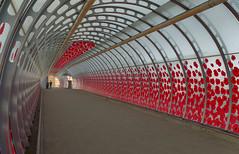 IMGP4765 (mattbuck4950) Tags: november england mist london europe unitedkingdom bridges poppies remembranceday canarywharf railways docklandslightrailway 2015 poplardlrstation londonboroughoftowerhamlets lenssigma18250mm camerapentaxk50