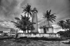 Give me light (Saint-Exupery) Tags: bw lighthouse faro nikon bn srilanka galle