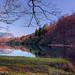 Bohinj Lake Shore - Slovenia