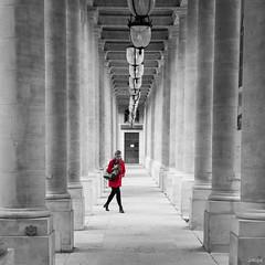Dcide (Julien Rode) Tags: city lumire nbr palaisroyal paris portfolio rue street urban ville colonnes