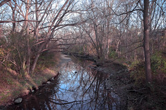 Taking in the late Fall NOV 2016 (TONY VIKLICKY) Tags: nikon tamron fx d3 wide angle nature water streams leaves showcase