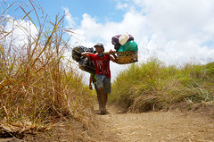 Rinjani mount porter (sydeen) Tags: rinjani outdoor toil heavy hiker backbreaking travel dense business asean indonesian carry walking lombok mount people traditional asia hard poverty mountaineering men tourism extreme work path hiking hike summit camp trek teamwork indonesia exhausting trekking misty senaru mountain porter track nature bamboo asian difficult savannah field