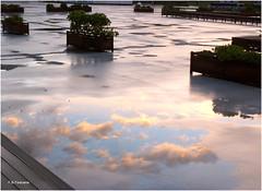 Charcos de Otoo. Autumn puddles. (Esetoscano) Tags: charlos puddles reflejos reflections reflejosenagua wetreflections atardecer sunset otoo autumn contraluz siluetas silhouettes
