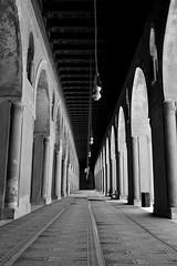 DSC_0661 (me222222222222222222222222) Tags: egypt cairo ibn tulun mosque corridor minaret ablution wudu black white
