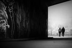 ...twoorder... (*ines_maria) Tags: black white bw mono monochrome noiretblanc streetphoto urban city couple light shadow walking human fog misty graffity art urbanart vienna danube river love