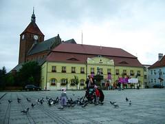 Darłowo Rathaus