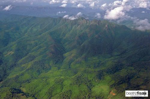 57 Selva de Chiang Mai a Mae Hong Son