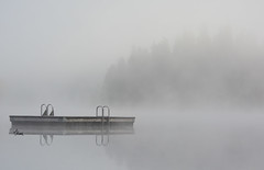 Silence - 2402b+ (teagden) Tags: silence fog foggy foggymorning lake jenniferhall jenhall jenhallphotography jenhallwildlifephotography nature photography nikon british columbia britishcolumbia canada morning earlymorning dock clearwater bc serenity peace calm mood minimalism solitude peaceful