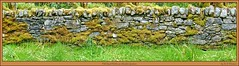 Old Rural Wall (M.J.Woerner) Tags: old rural stonewall stone wall stable sound moss securing nature garden scotland caledonia alba lochcaron attadale attadalegardens westerross