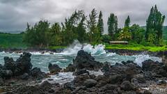 Kawe'E Point - Maui, Hawaii (Tactile Photo | Greg Mitchell Photography) Tags: hana october landscape water 2016 hawaii orange wednesday maui tree waterfall flower lush roadtohana green rainforest rain tropical wailuaikifalls