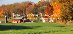 Clothesline out Amish Farm 5828 (intricate_imagery-Jack F Schultz) Tags: jackschultzphotography intricateimageryphotography amishcountry ohioamish southeasternohio fallcolor clothesline clotheshangingoutside amishfarm