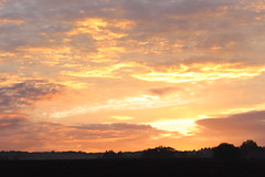 goodbye day (mamalaas) Tags: ciel sky rose pink nature clouds nuage couleurs france colors earth terre arbres trees