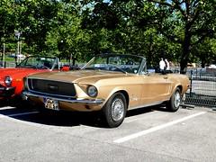 Ford Mustang Cabrio 1968 5000 ccm 220 PS (ludmillafan132) Tags: ford mustang fordmustang oldtimer beautifuloldtimer oldcars car cars fahrzeuge vehicles vehicle 1968 68er 60er oldsmobile auto autos kraftfahrzeuge