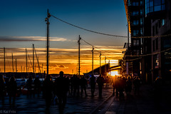 Into the sunset (kaifr) Tags: silhouettes sunset shopping people crowded christmas yellow orange busy oslo norway no