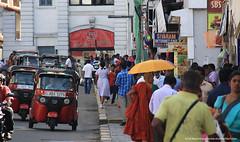 wandering (amalmeemanage) Tags: amal srilanka studiowildart robes buddhistmonk bhikkus street kandy