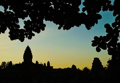 from under a tree (SM Tham) Tags: asia cambodia angkor unescoworldheritagesite roluosgroup bakong khmer stone temple templemountain pyramid towers pedestals statues silhouettes sunset dusk sky tree leaves outdoors