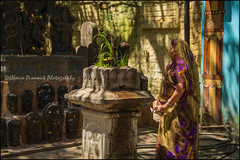Shrine.   Bangalore (Claire Pismont) Tags: asia asie inde india karnataka bengalore bangalore pismont clairepismont shrine hinduism hindouisme hindu travel travelphotography documentory viajar voyage