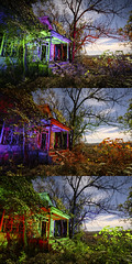 RGB Facade Triptych II (Notley) Tags: rural missouri notley notleyhawkins 10thavenue httpwwwnotleyhawkinscom missouriphotography notleyhawkinsphotography lightpainting bluelight greenlight blue green night nocturne 光绘 光繪 lichtmalerei pinturadeluz ライトペインティング प्रकाशपेंटिंग ציוראור اللوحةالضوء abandoned sky longexposure november ruralphotography trees chartitoncountymissouri facade fall windows 2016 red redlight rgb outdoor serene building architecture foilage triptych tio triad