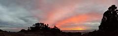 2016 Nov 11 17:08 (xooxuaa) Tags: sunset berkeley goldengate bayarea sfbay baybridge oakland sanfrancisco golden sun marin marinheadlands berkeleyhills hike