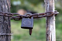 cerrado (Ricardo Obando) Tags: candado cerrado cadena chile canon 50mm