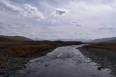 MAQ_0399 (MolviDSLR) Tags: deosair national park skardu gilgit baltistan northern areas pakistan brown bear wild life scenery landscape