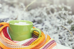 Hot chocolate with marshmallow in green cup (victoria.kondysenko) Tags: hot chocolate marshmallow white green cup cozy winter checkered scarf snow covered table garden cocoa cold delicious dessert sweet drink happiness outside tasty lifestyle healthy dairy enjoying outdoors looking gloves beautiful milkshake