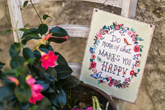 Do more of what makes you happy (Eklis273) Tags: happy glcklich flower blume stuhl chair schild sign saying spruch pink grn green outdoor mascesine gardasee lakegarda lagodigarda italien italy samyang sonya6000