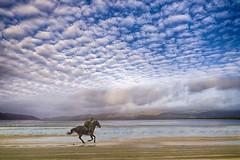 Freedom. (bainebiker) Tags: beach sky mountains clouds water estuary horseandrider mackerelsky canonef24mmf14liiusm tonemapping ynyslas dyfed walesuk