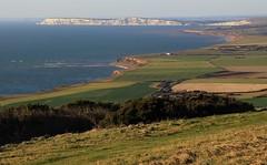 Coastline on the Isle of Wight 281116 (3) (Richard Collier - Wildlife and Travel Photography) Tags: isleofwight landscape seascape water coastal coastalcliffs coastallandscape southcoast