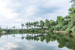 Mirror (PietroPosacki) Tags: ancona marche portonovo italia italy reflections mirror clouds riviera conero lake trees landscape