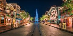 A Disney Christmas 2016 (Justin in SD) Tags: disney disneyland holiday disneylandchristmas tree christmastree 2016 season winter lights dark night hdr 32bit anaheim disneylandresort themepark sony sonyalpha sonya7rii a7rii a7r2
