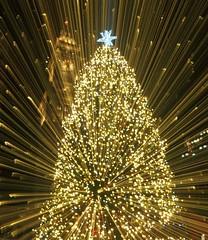 Faneuil Hall Christmas Tree (stacyl_flikr) Tags: christmas christmastree lights customhouse boston faneuilhall night christmaslights massachusetts