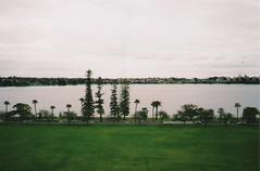 Langley Park (youcutmeoffmidfunk) Tags: 35mm scenery perth wa konica kodakmax400 westernaustralia langleypark mt7 konicamt7