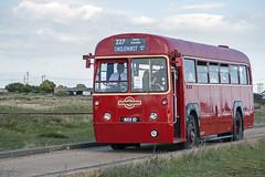 Preserved London Transport AEC Regal IV, MXX10 (RF368) (Gerry A Powell) Tags: bus coach dungeness londontransport infocus aec highquality busrally romneyhythedymchurchrailway regaliv mxx10 rf368