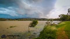 Summer storm-0382.jpg (naemickpics.com) Tags: summer lake storm rain clouds canon albert au australia newsouthwales lakealbert wignall wwwnaemickpicscom