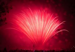 Display (Mr Moss) Tags: fireworks 365 southwark starburst southwarkpark southwarkparkfireworks