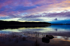 A blues of purple and gold (Joni Mansikka) Tags: november autumn trees sea sky fall nature silhouette clouds woodland suomi finland landscape bay colours outdoor seabay paimionlahti