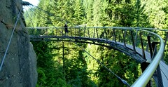 capilano-suspension-bridge-vancouver