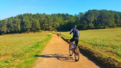 Pedalant per Collserola (bertanuri bcn) Tags: barcelona camp mountain bike cat landscape cycling carretera bcn mountainbike bicicleta catalonia campo vehicle catalunya montaa cami pista cerdanyola collserola catalogne muntanaya