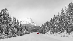 Road to Peyto (f_desmet) Tags: travel trees winter red blackandwhite mountain snow canada mountains nature monochrome car canon landscape photography blackwhite nationalpark highway automobile earth alberta banff bnw banffnationalpark 6d planetearth 16x9 ourland travelalberta ourplanet visitcanada visitalberta