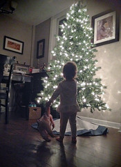 merry christmas baby! (Mr.  Mark) Tags: christmas xmas baby tree girl lights photo stock teddybear surprise markboucher