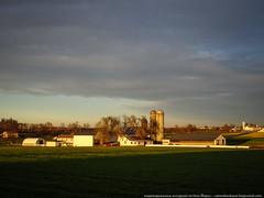 samsebeskazal.livejournal.com-04985.jpg (samsebeskazal) Tags: pennsylvania farm amish lancaster lancastercounty buggy pennsylvaniadutch