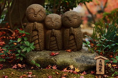 00000268 (Nekogao) Tags: cute japan kamakura  kanagawa  jizo hasedera       kanagawaprefecture