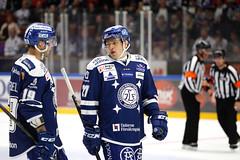 Ytterell och Castonguay 2016-10-01 (Michael Erhardsson) Tags: leksand lif shl hockey 2016 20162017 leksing alexander ytterell eric castonguay taktik taktiksnack